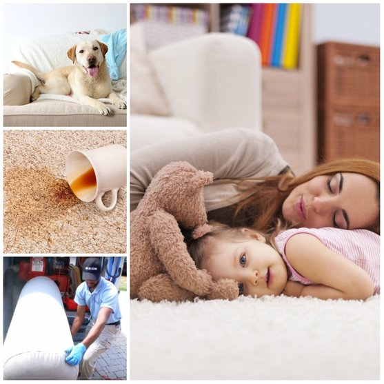 FAQ Carpet and Duct Cleaning Vaughan